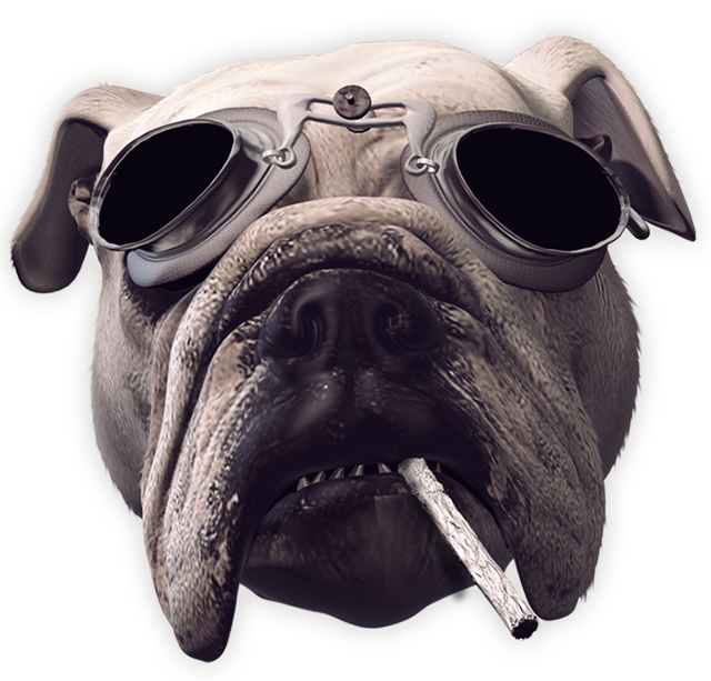 And this is the cool DöG